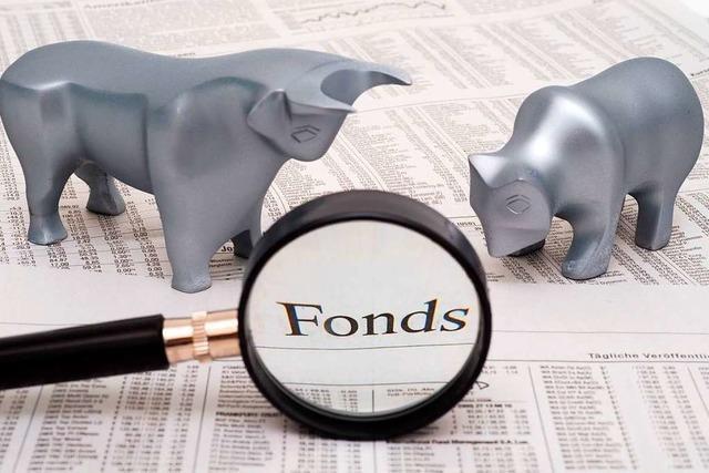 BZ-Telefonaktion: Was nützen Investmentfonds?