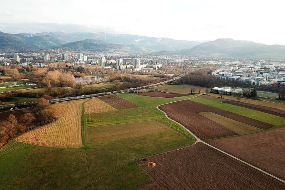 Hier soll der neue Stadtteil gebaut we...etenbachpark bleibt als Park erhalten.  | Foto: Michael Saurer