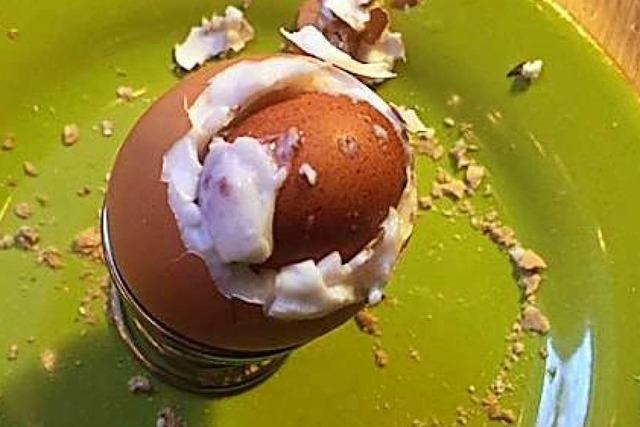 Grünen-Abgeordneter aus Waldkirch findet ein Ei in seinem Ei
