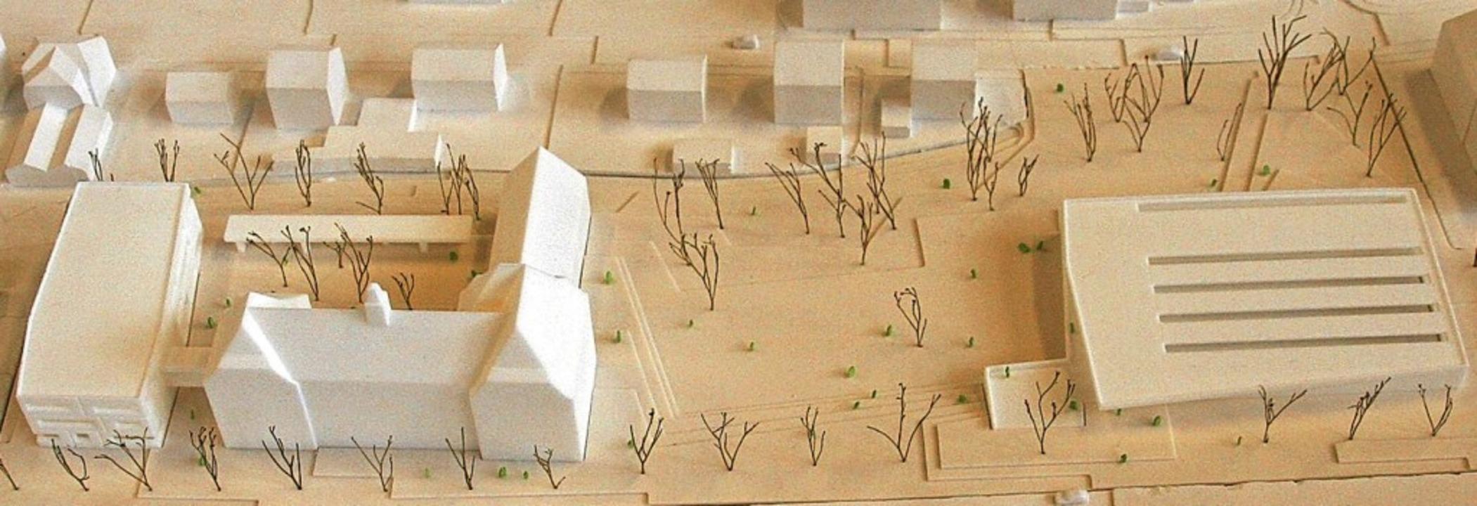 Dieses Modell des beim Architektenwett...wie der Campus einmal aussehen soll.    | Foto: Archivfoto: Marlies Jung-Knoblich