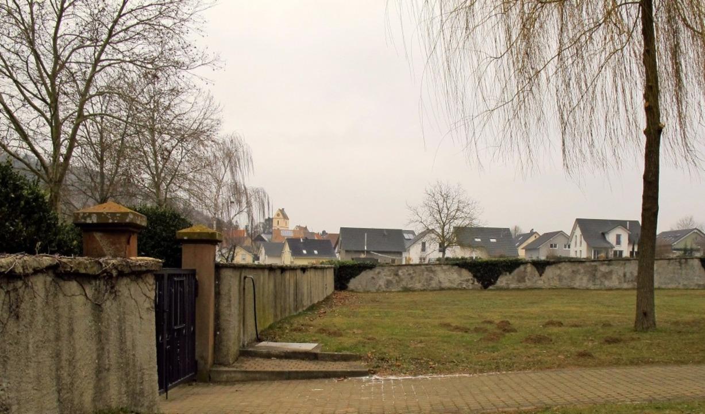 Im Eingangsbereich des Tannenkircher F...as gärtnergepflegte Grabfeld entstehen    Foto: Jutta Schütz