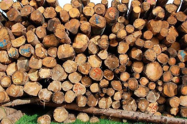 Warnstreik bei den Dold Holzwerken