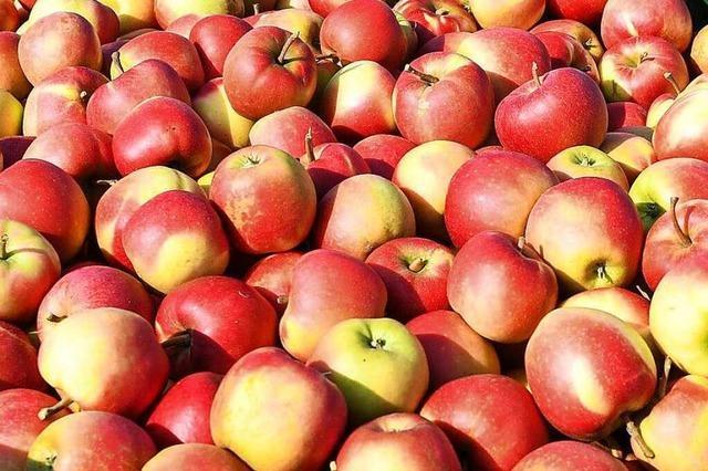 Was macht einen guten Apfel aus?