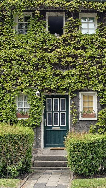 Begrünte Fassade   | Foto: Photocase