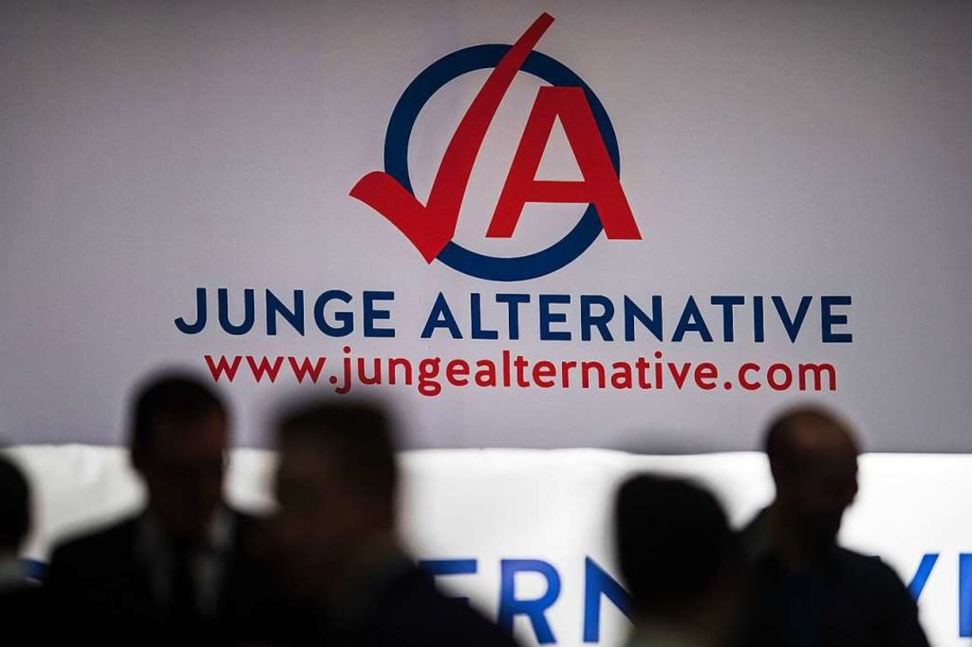 Die Jugendorganisation der AfD steht im Verdacht verfassungsfeindlich zu sein.  | Foto: dpa
