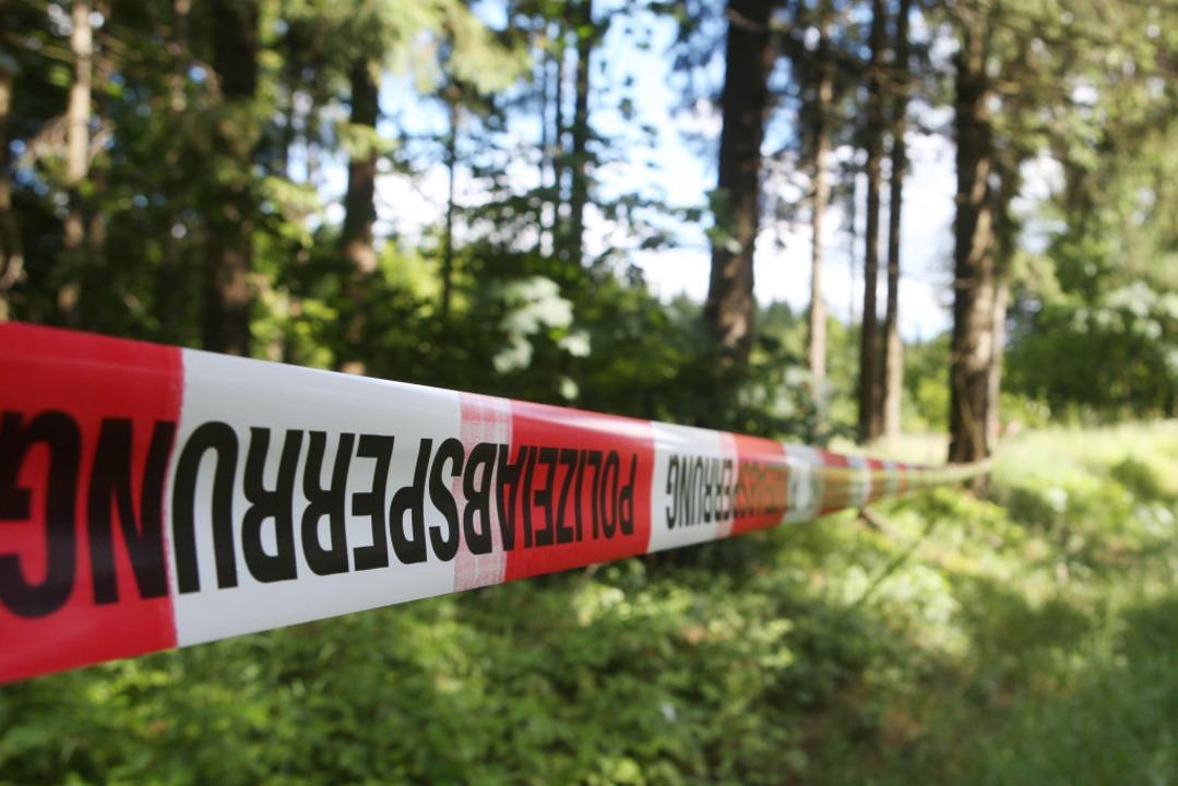 Am Rande eines Waldstücks auf der Gema...die Leiche des Mannes gefunden worden.  | Foto: dpa