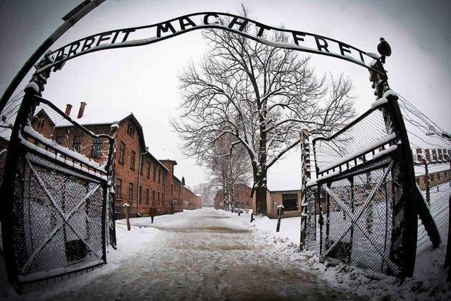 Was war der Holocaust?
