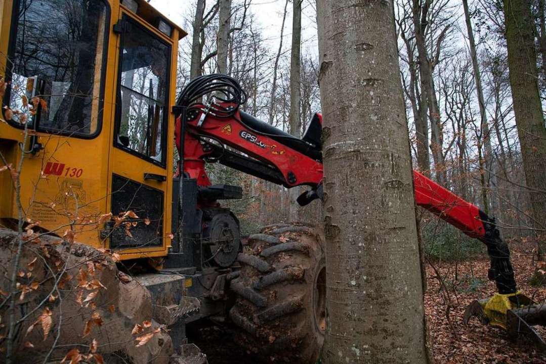 Unbekannte haben eine Forstmaschine be... von mehreren tausend Euro verursacht.  | Foto: Volker Münch