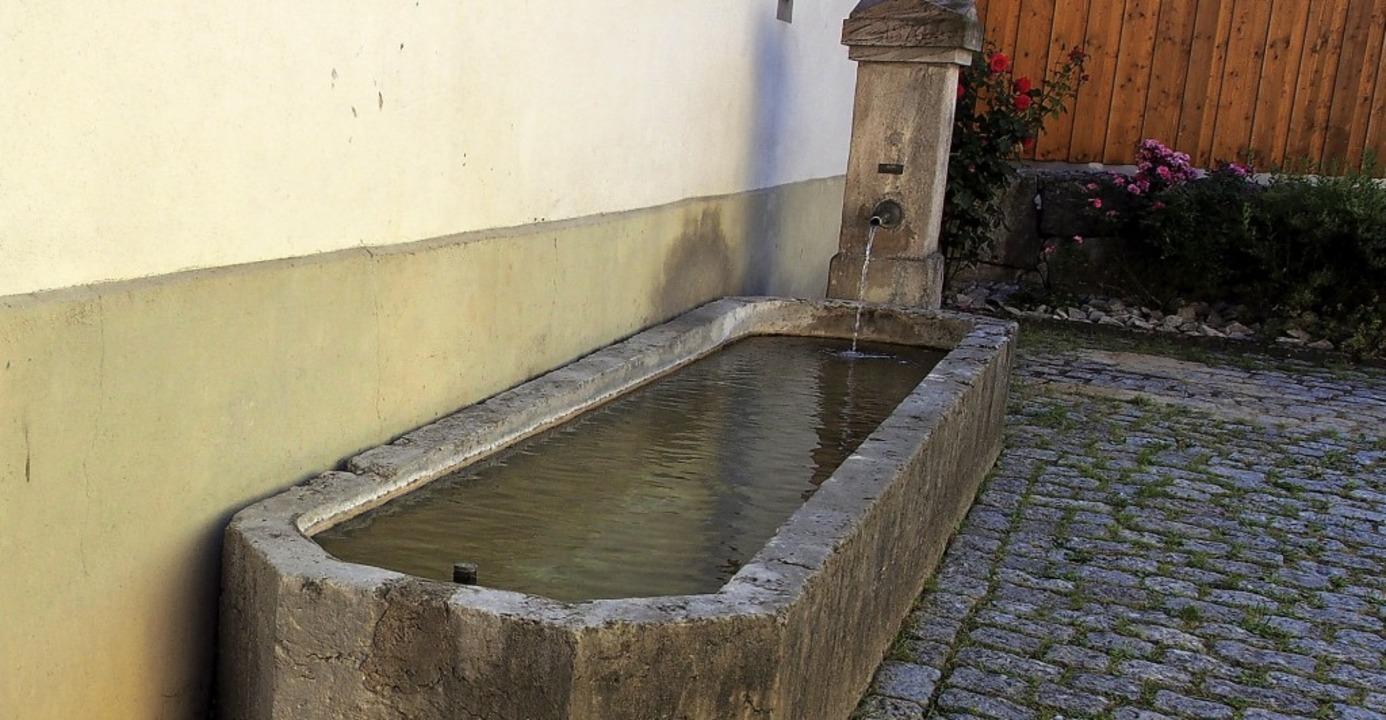 Einer der zwei Brunnen an der Trotte: ...Dieser Holzpfeiler ist 485 Jahre alt.   | Foto: Burkhardt