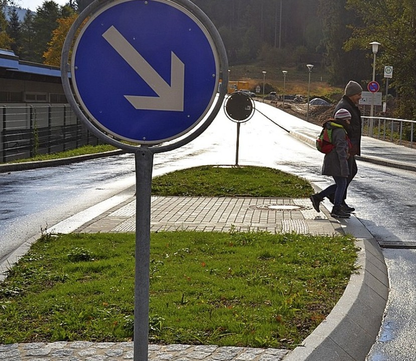 Eine Querungshilfe im Bereich der Einm...  Straßenbaubehörde müsste zustimmen.     Foto: Symbolfoto: Tanja Bury