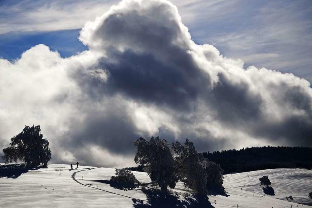 So schön präsentiert sich der Winter zur Zeit auf dem Schauinsland.  | Foto: dpa
