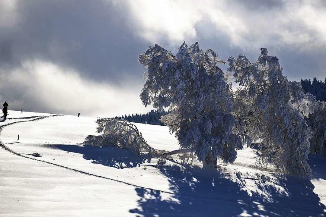 Warm anziehen, ab in den Schnee, die W...ive Freizeittipp der Ticket-Redaktion.  | Foto: dpa