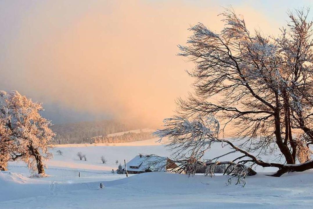 So schön präsentiert sich derzeit die ... Sonnenuntergang auf dem Schauinsland.  | Foto: Edgar Erler