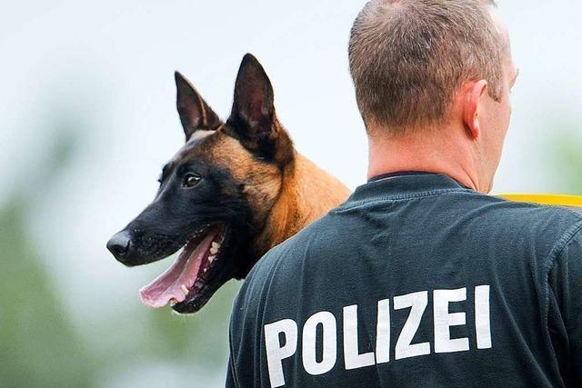 Polizeihund stellt zwei Einbrecher auf Endinger Recyclinghof