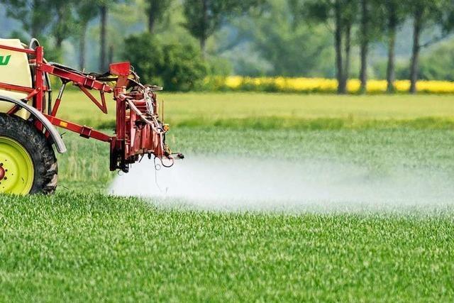 Nabu fordert geringeren Pestizideinsatz in der Landwirtschaft