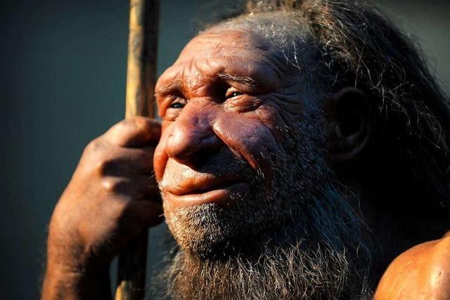 Neandertaler jagten mit tödlicher Präzision