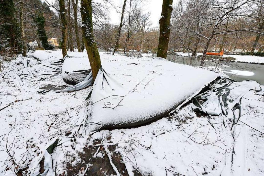 Der aus dem Waldsee gebaggerte Schlamm liegt noch in großen Säcken.    Foto: Ingo Schneider