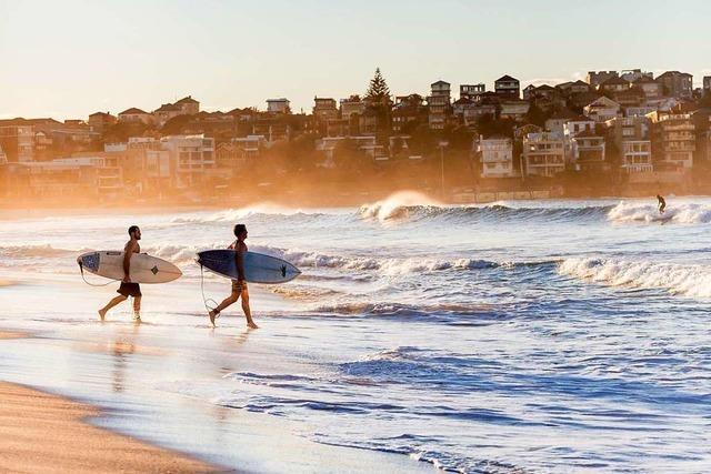 Am Bondi Beach sind die Schönen und Schaulustigen zu Hause