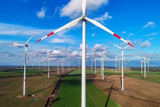 Landkreis Lörrach erreicht Silber beim European Energy Award