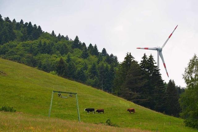 Windkraftgegner im Kleinen Wiesental fühlen sich bestätigt