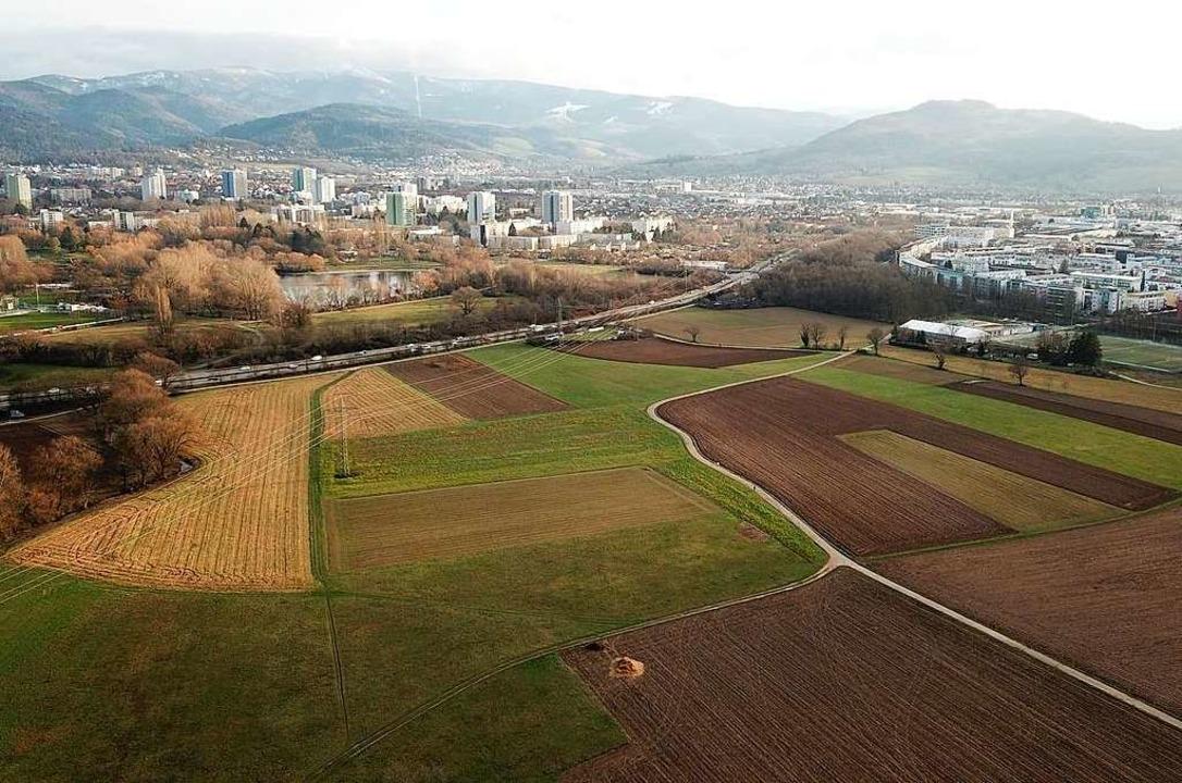 Wo Freiburgs neuer Stadtteil gebaut we...bachgebiet westlich der Besançonallee,  | Foto: Michael Saurer