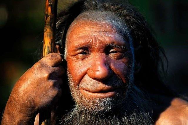 Wie jagte man in der Steinzeit?