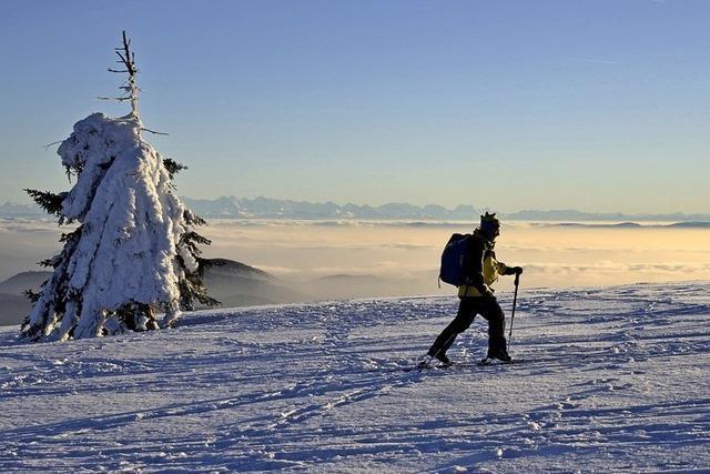 Schneeschuhwanderung im Biosphärengebiet bei Menzenschwand