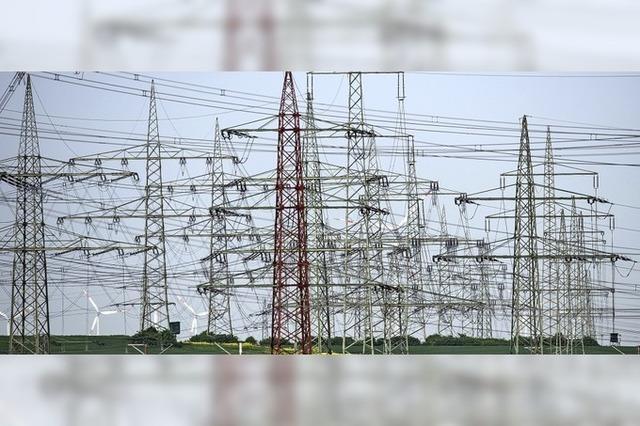 Netzbetreiber wollen noch mehr Leitungen