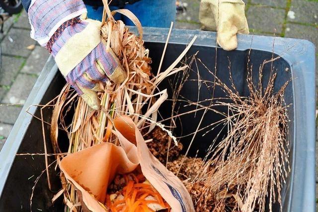 Kreis Lörrach beobachtet hohen Verschleiß bei Mülltonnen