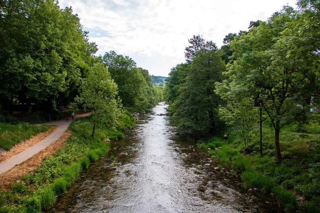 Die Dreisam zählt in Freiburg zu den beliebtesten Spots für Läufer.  | Foto: FWTM
