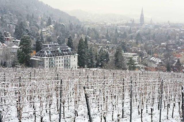 Im Januar gab es in Freiburg wenig Schnee und wenig Sonne