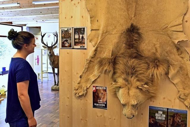 Die Ausstellung im Waldhaus ist wieder eröffnet