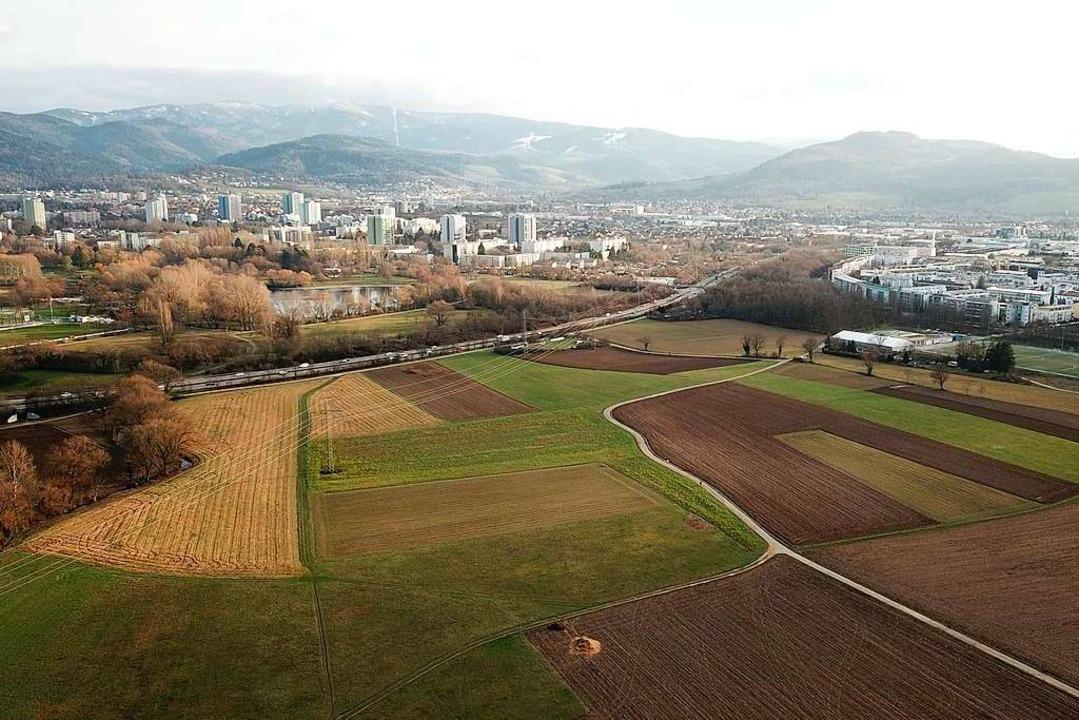 Das Dietenbachgelände westlich der Bes...sançonallee – wird nicht bebaut.  | Foto: Michael Saurer