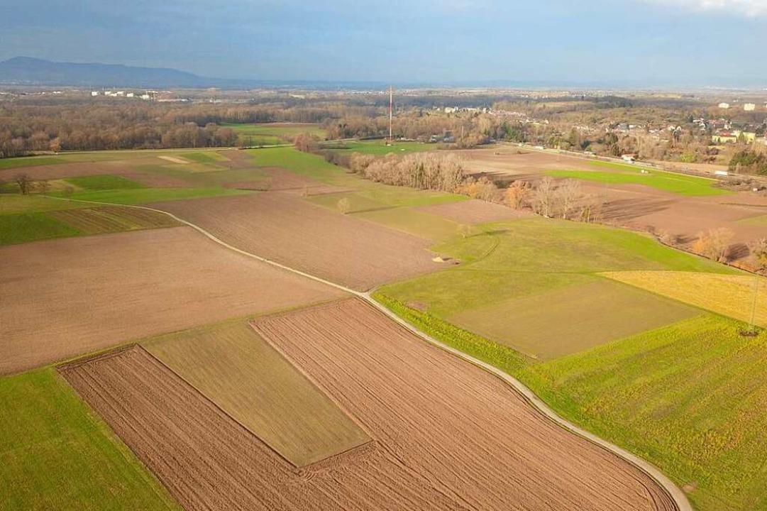 Blick nach Westen über das Dietenbachg...nd rechts der Autobahnzubringer Mitte.  | Foto: Michael Saurer