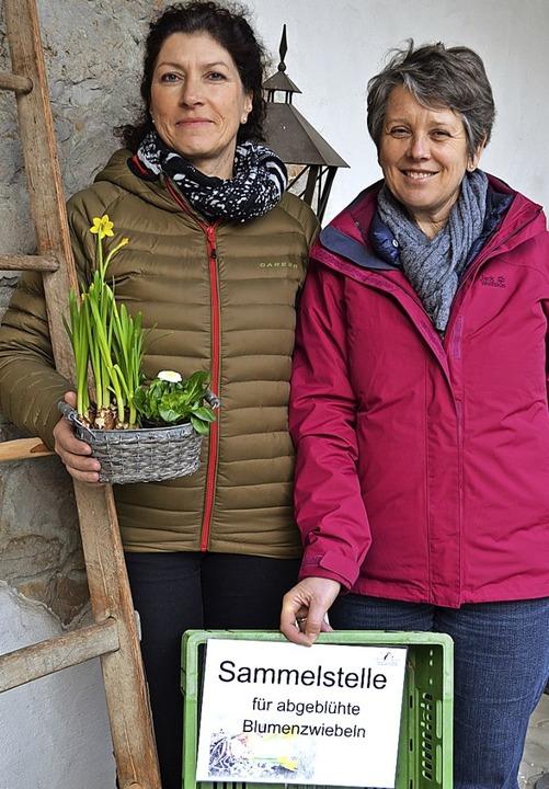 Agnes Barth (rechts) und Antonia Heckel sammeln Blumenzwiebeln.  | Foto: Vogt