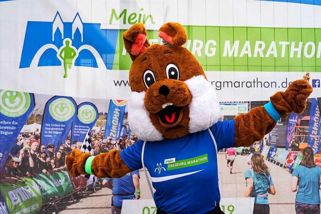 Hopsi Hobbele – das Maskottchen des Mein Freiburg Marathons.  | Foto: FWTM