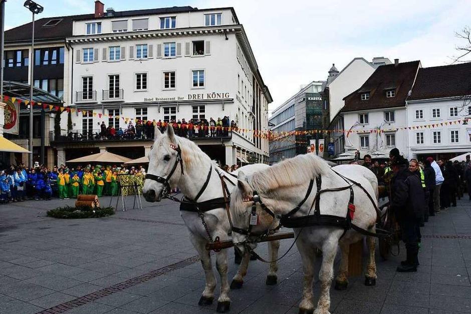 Der Narrenbaum auf dem Lörracher Marktplatz steht. (Foto: Barbara Ruda)