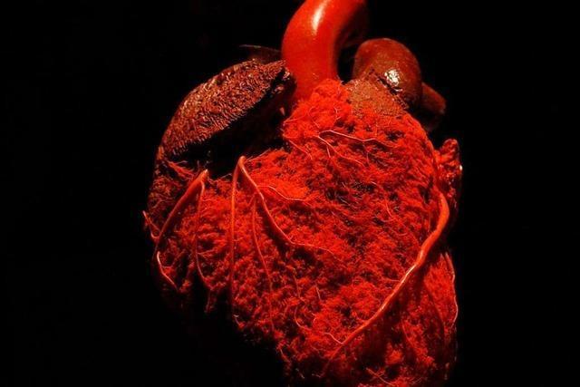 Anatomische Besonderheit: Mancher hat das Herz tatsächlich am rechten Fleck