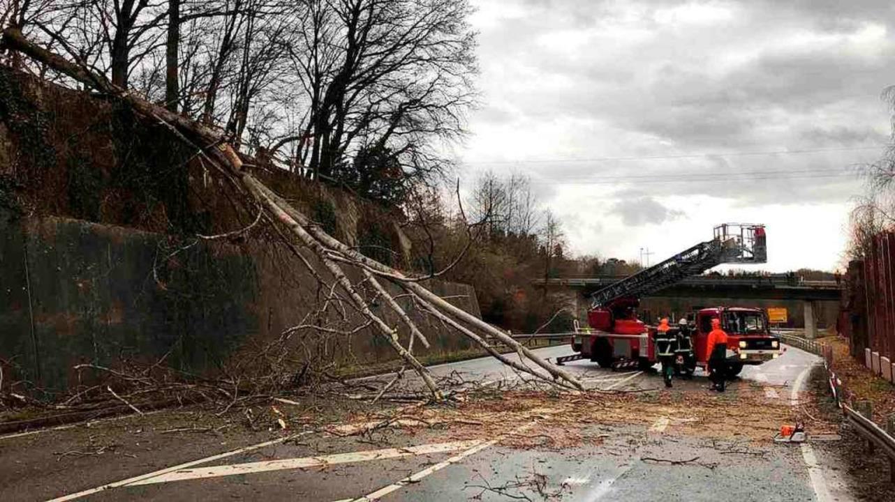 Die Feuerwehr Schopfheim rückte zur Räumung der Fahrbahn aus.    Foto: Privat