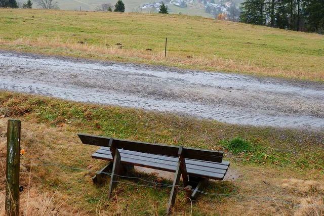 Möglicher Bürgerentscheid: Todtnauer Gemeinderat tagt in der Turnhalle