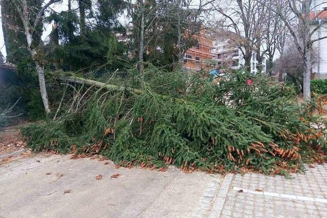 Sturmtief sorgt für Stress bei den Rettern im Landkreis Waldshut