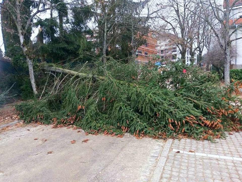 Auch in Bad Säckingen müsste die Feuerwehr blockierte Straßen räumen.  | Foto: Feuerwehr Bad Säckingen