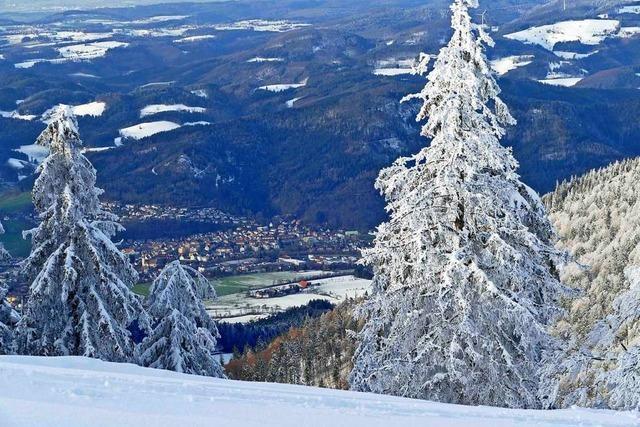 Blick vom Kandel: Schneefelder im dunklen Grün