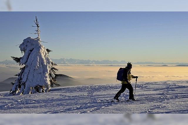 Unterwegs mit Biosphären-Rangern im Menzenschwander-Tal