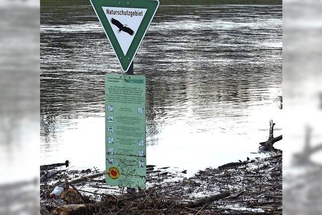 Limnologen reichen bei EU-Kommission in Brüssel Beschwerde ein