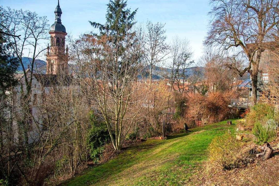 Alle Erinnerungen sind überwuchert &#8...dstück des Eisner-Hauses in Gengenbach  | Foto: Dieter Wissing