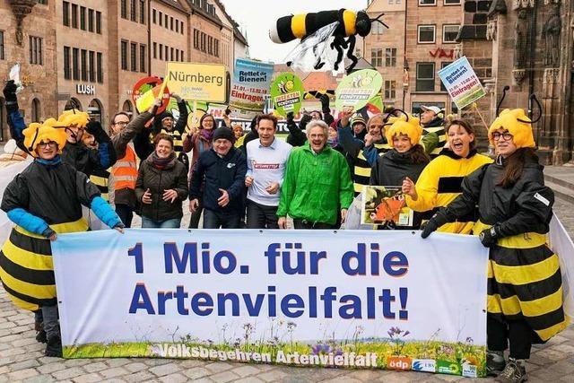 Die Macht der Bienen