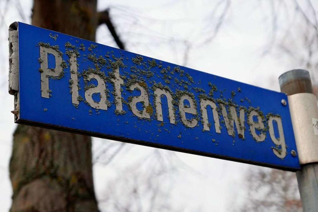 Hat ein an manchen Stellen etwas  Moos angesetzt: Die Bad Krozinger Parksiedlung  | Foto: Hans-Peter Müller