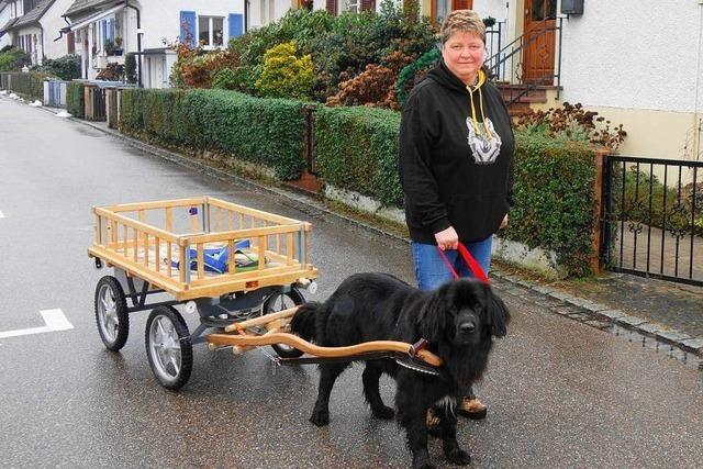 Wie ein Hund in Schopfheim den Müll wegbringt