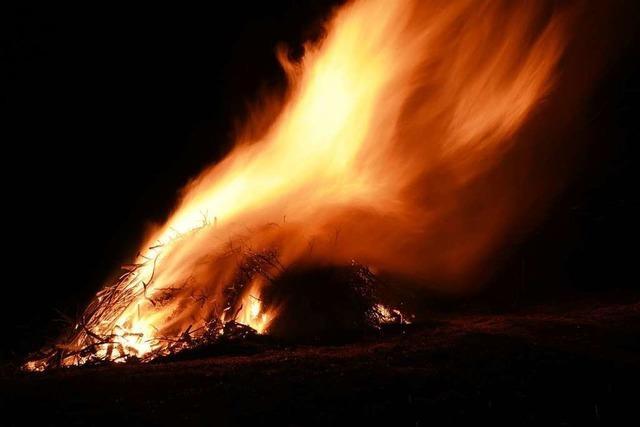 Haltingen bekommt ein großes Fasnachtsfeuer – dank des Laubholzbockkäfers